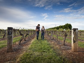 Coonawarra Wineries Walking Trail - Accommodation Cooktown