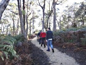 Bridport Walking Track - Accommodation Cooktown