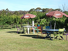 Cerise Brook Orchard  Family Golf - Accommodation Cooktown