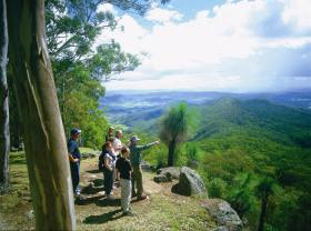 Gold Coast Hinterland Great Walk - Accommodation Cooktown