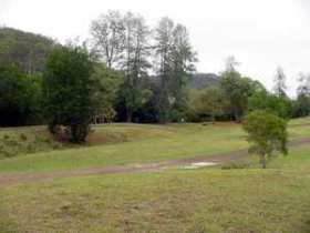 Brooyar State Forest - Accommodation Cooktown