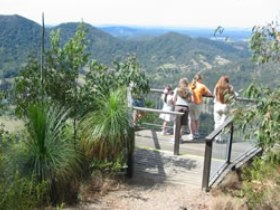 Mapleton Forest Reserve - Accommodation Cooktown