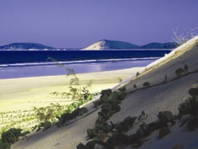 Cooloola Great Sandy National Park - Accommodation Cooktown