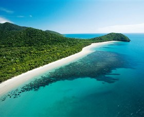 Cape Tribulation Daintree National Park - Accommodation Cooktown