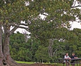 Ravensbourne National Park - Accommodation Cooktown
