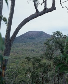 Mount Fox - Accommodation Cooktown