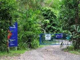The Bat Hospital Visitor Centre - Accommodation Cooktown