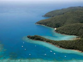 Butterfly Bay - Hook Island - Accommodation Cooktown