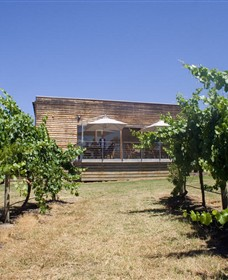 Shantell Vineyard - Accommodation Cooktown