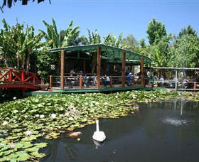 Blue Lotus Water Garden - Accommodation Cooktown