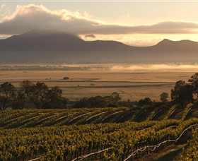 Montara Wines - Accommodation Cooktown