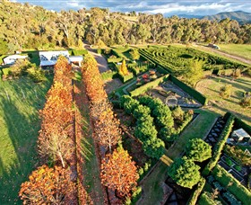High Country Maze - Accommodation Cooktown
