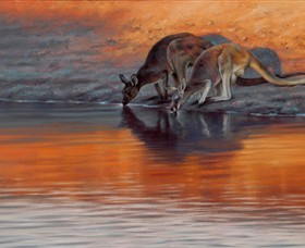 Steve Morvell Wildlife Art - Accommodation Cooktown