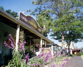 Passionfish Candles - Accommodation Cooktown
