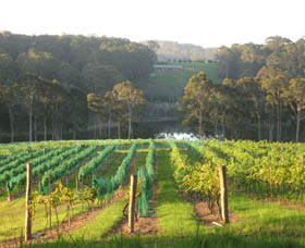 Tilba Valley Wines - Accommodation Cooktown