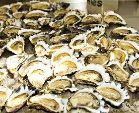 Wheelers Oysters - Accommodation Cooktown