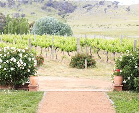 Brindabella Hills Winery - Accommodation Cooktown