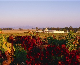 Morris Wines - Accommodation Cooktown
