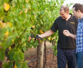 Fratin Brothers Vineyard - Accommodation Cooktown
