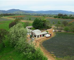 Schmidts Strawberry Winery - Accommodation Cooktown
