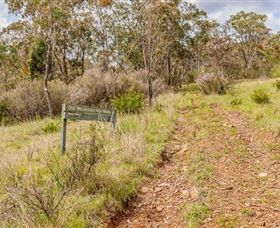 Old Mountain Road Walking Track - Accommodation Cooktown