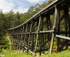 Noojee Trestle Bridge - Accommodation Cooktown