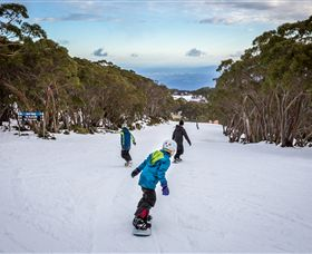 Mt Baw Baw Alpine Resort - Accommodation Cooktown