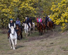 Burnelee Excursions on Horseback - Accommodation Cooktown