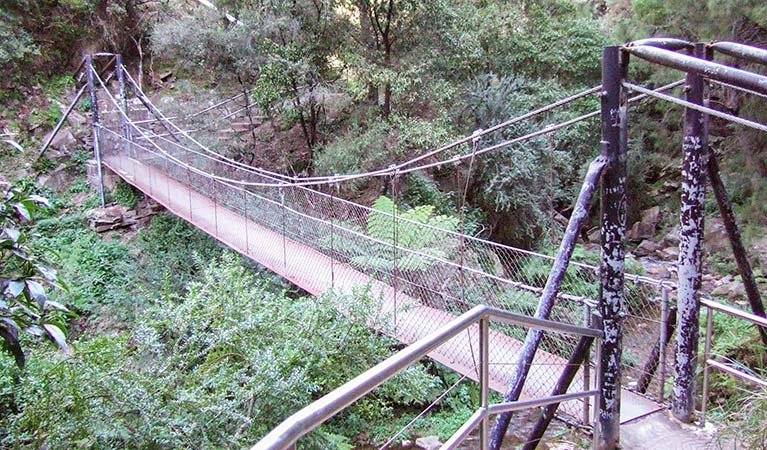 Jenolan River walking track - Accommodation Cooktown