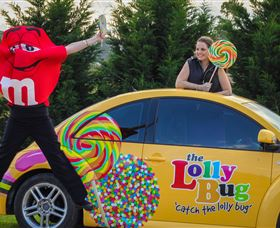 The Lolly Bug - Accommodation Cooktown