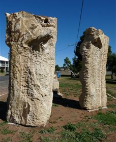 Fossilised Forrest Sculptures - Accommodation Cooktown