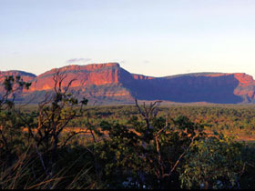 Blackdown Tableland National Park - Accommodation Cooktown
