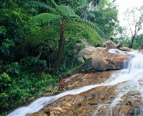 Finch Hatton Gorge - Accommodation Cooktown