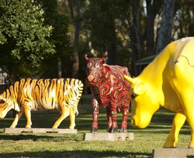 Greater Shepparton's Moooving Art - Accommodation Cooktown