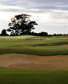 Black Bull Golf Club - Accommodation Cooktown