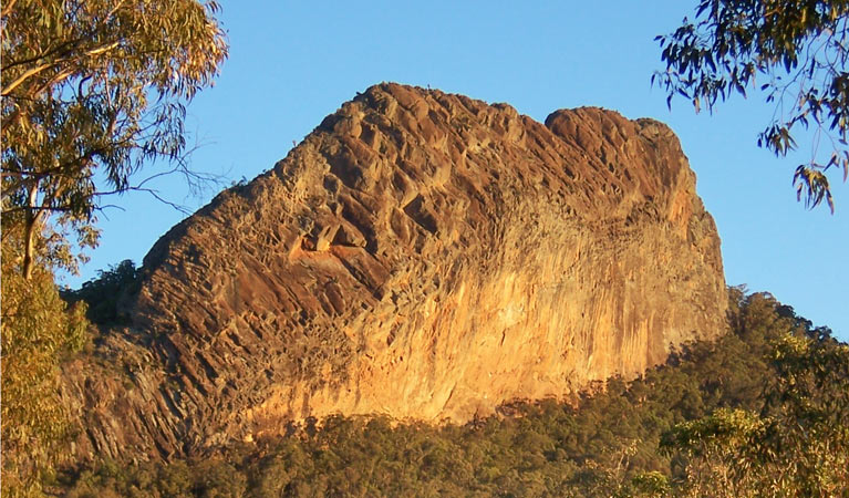 Kaputar scenic drive - Accommodation Cooktown