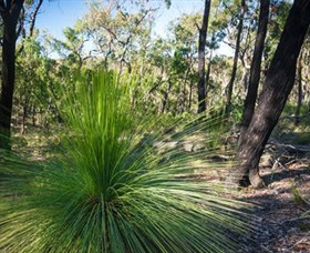 Brisbane Ranges National Park - Accommodation Cooktown