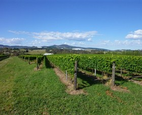 Hedberg Hill Wines - Accommodation Cooktown