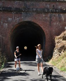 Cheviot Tunnel - Accommodation Cooktown
