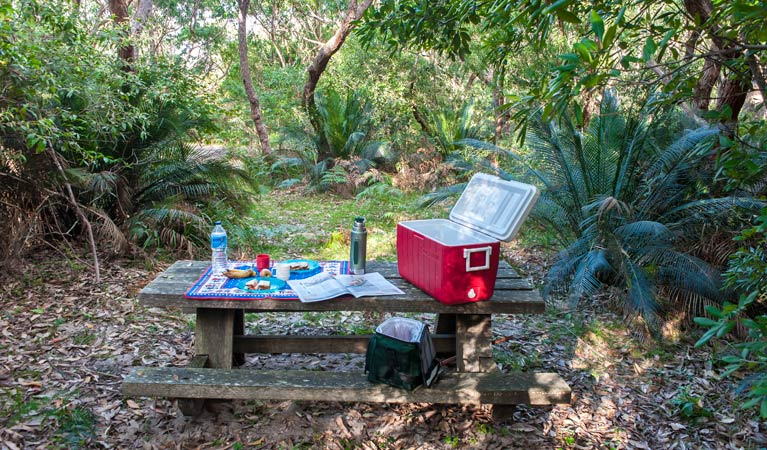 Little Llangothlin picnic area - Accommodation Cooktown