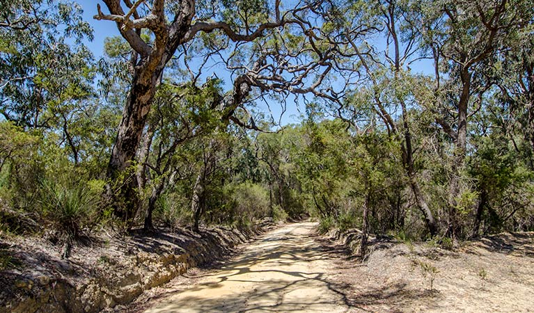 Howes trail - Accommodation Cooktown