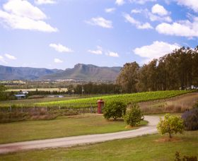 Catherine Vale Wines - Accommodation Cooktown