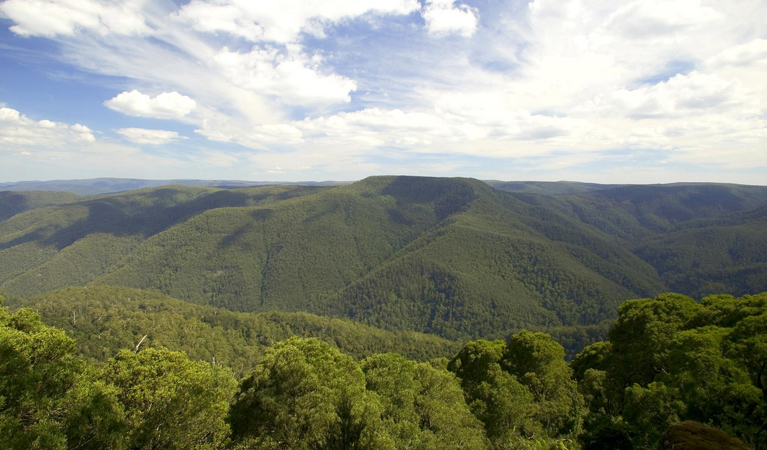 Barrington Tops National Park - Accommodation Cooktown