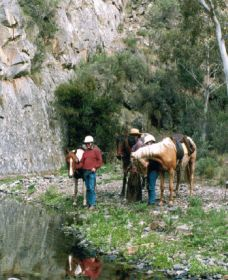 Yarramba Horse Riding - Accommodation Cooktown