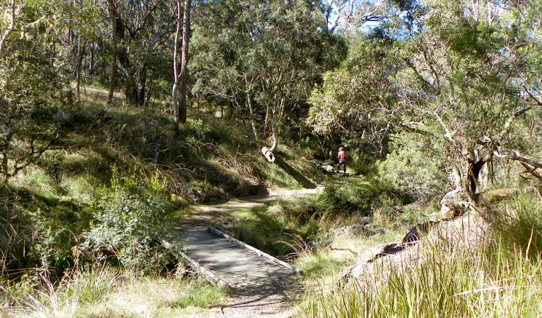 Wollomombi walking track - Accommodation Cooktown