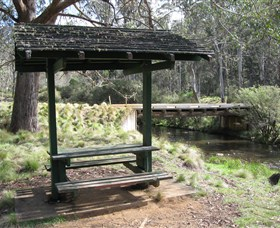 Barrington Tops State Forest - Accommodation Cooktown