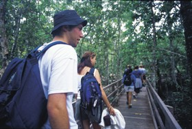 Bellthorpe National Park - Accommodation Cooktown