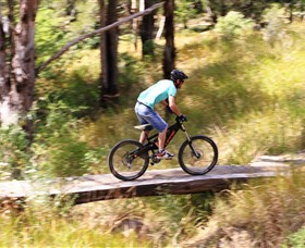 The Steps Mountain Bike Park - Accommodation Cooktown