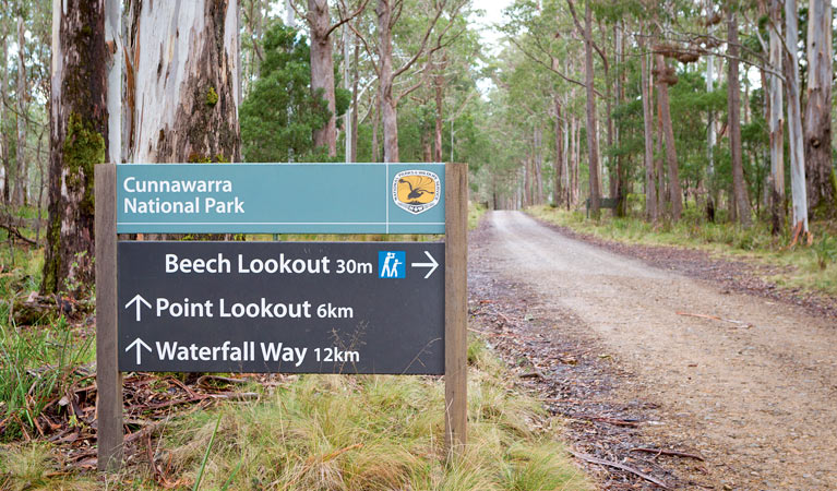 Beech lookout - Accommodation Cooktown