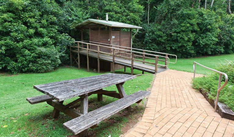 The Glade picnic area - Accommodation Cooktown